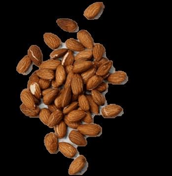 אגוזים וזרעים